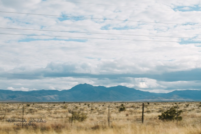 journey to marfa. 2013-126